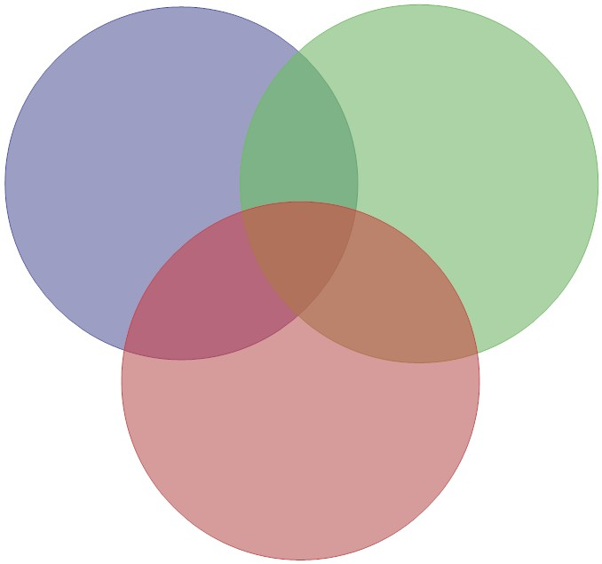 Diagram venn diagram with 3 circles template : The Little Reading Nook: Review: Little Bee by Chris Cleave
