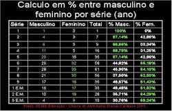 Porcentagem entre Masculino e Feminino