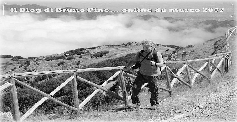 Il Blog di Bruno Pino