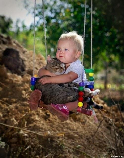 Une belle Photo chat avec Bébé
