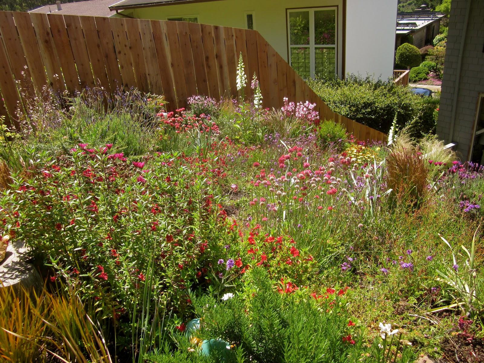 The Barefoot Gardener - Mark Russell - San Francisco, CA