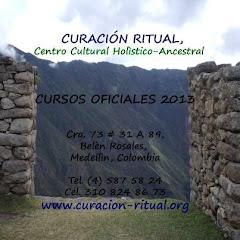 CURSOS OFICIALES 2013