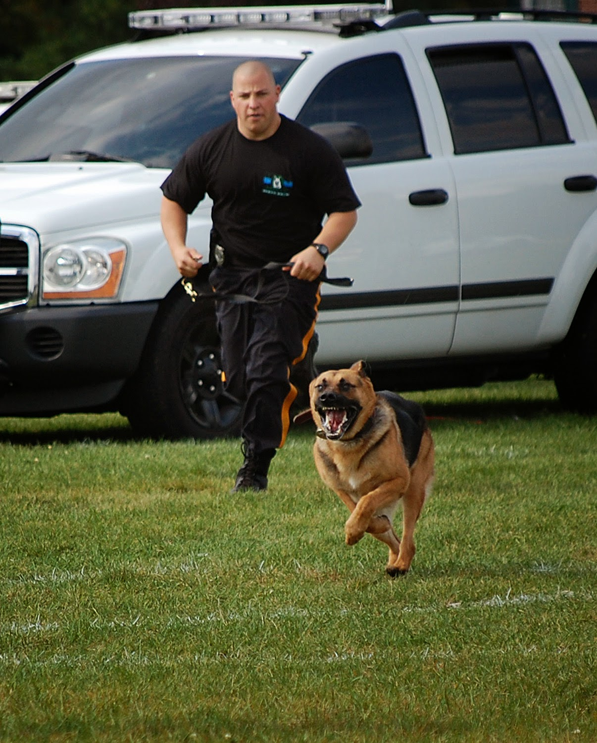 Judge and his handler, Corporal Michael Franks