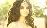 Actress Vedhika glamorous photos gallery-thumbnail