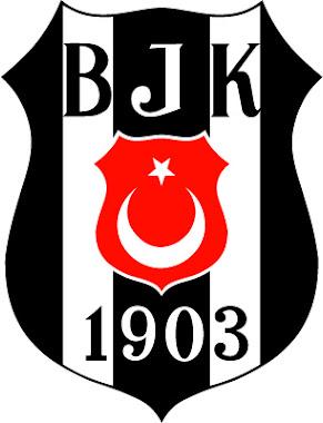 Besiktas JK Istanbul Turkey