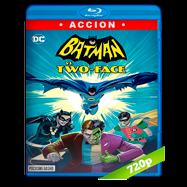 Batman Vs. Dos Caras (2017) BRRip 720p Audio Dual Latino-Ingles