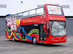 Salvador Bus