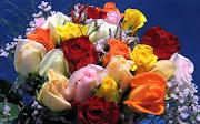 Flori Imagini Desktop Poze Trandafiri Trandafiri