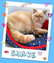 Príncipe Shake