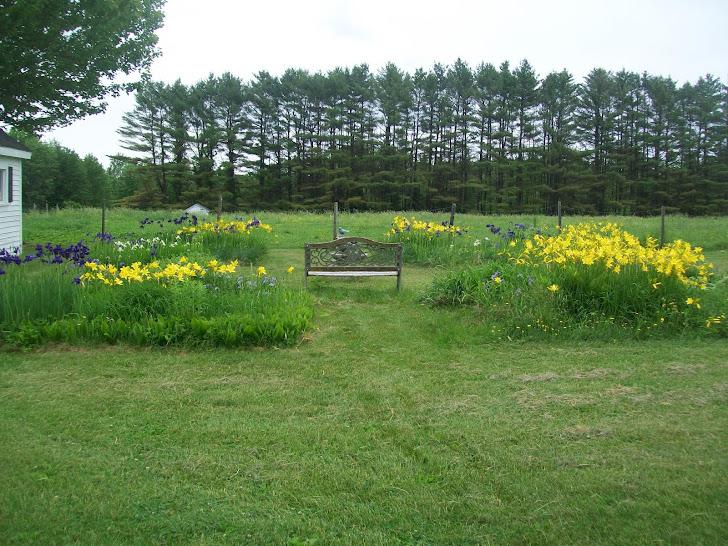 Spring at Homeland Farm