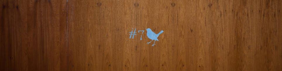 Pássaro Achado #7