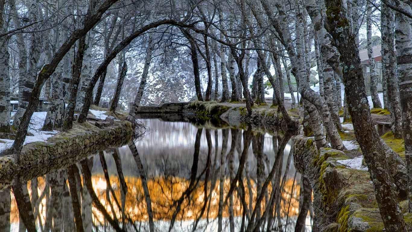 Zêzere River in Covão da Ametade, Serra da Estrela mountains, Portugal (© Joel Santos/Corbis) 262