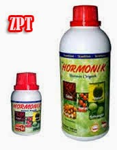 produk-nasa-hormonik-auxin-giberelin-sitokinin-zat-rangsang-tumbuh-distributor-resmi-nasa-ptnatural-nusantara-stokist-online-nasa