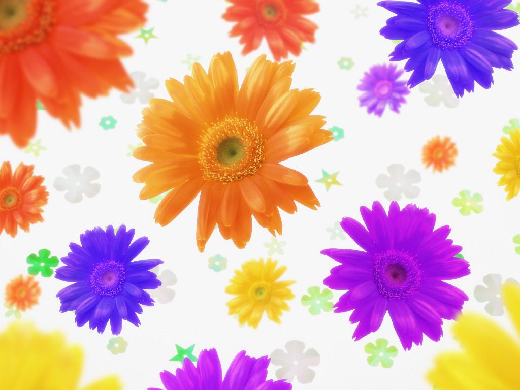 http://4.bp.blogspot.com/-OKhpWJHqcD0/TYfZJXJ1GcI/AAAAAAAABNk/CUWX5Me9xvU/s1600/Proljetno-cvijece-download-besplatne-ljubavne-slike-pozadine-za-desktop-kompjuter-ljubav.jpg
