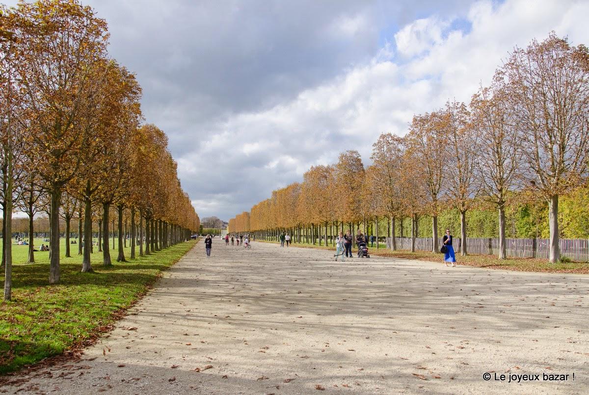 Saint Germain en Laye - chateau et parc - automne