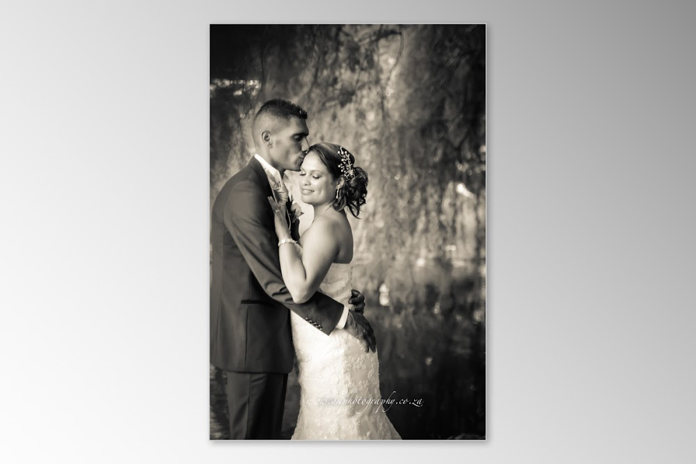 DK Photography Slideshow+DVD-233 Tania & Grant's Wedding in Waterfront | Atlantic Imbizo  Cape Town Wedding photographer