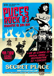 Puces Rock 2014