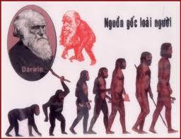 Sự phát sinh loài người