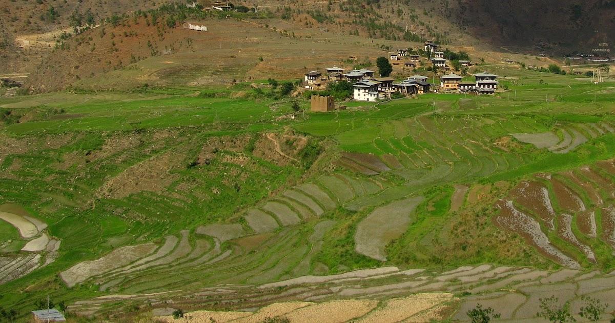 sectors of the bhutanese economy Postal address royal monetary authority of bhutan chhophel lam kawajangsa post box no154  commentaries on the economic sectors are based on information.
