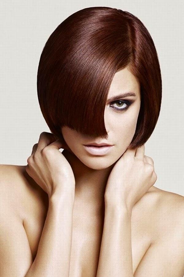 tinte castaño 2014 pelo liso