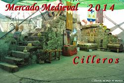 MERCADO MEDIEVAL 2014