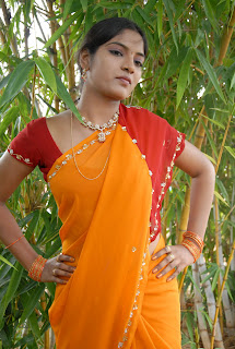 Keerthi Saree Pictures (13)