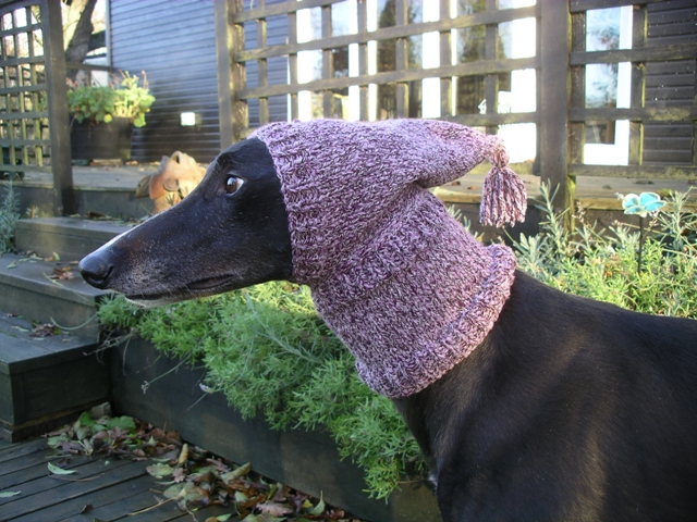 Crafting4Greyhounds: Greyhound Pixie Hats
