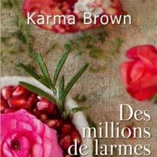 Des millions de larmes et de rires de Karma Brown