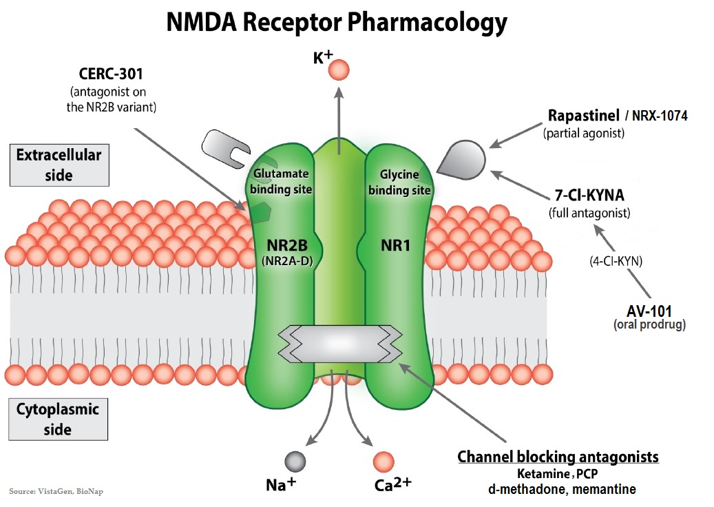 post  u00abnmda receptor targeting offers new hope for severely