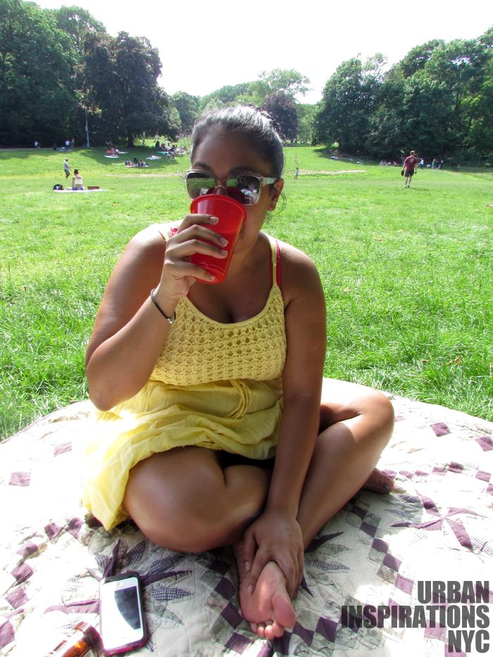 summer picnic at prospect park Brooklyn