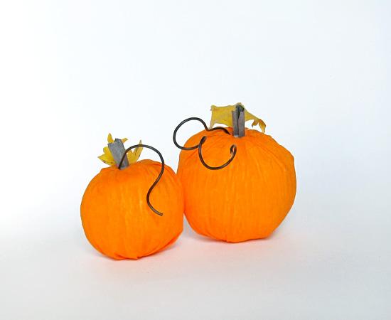 тыковки, Pumpkins