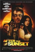 Watch After the Sunset 2004 Megavideo Movie Online