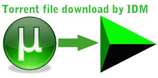 How  to download Torrents file with IDM