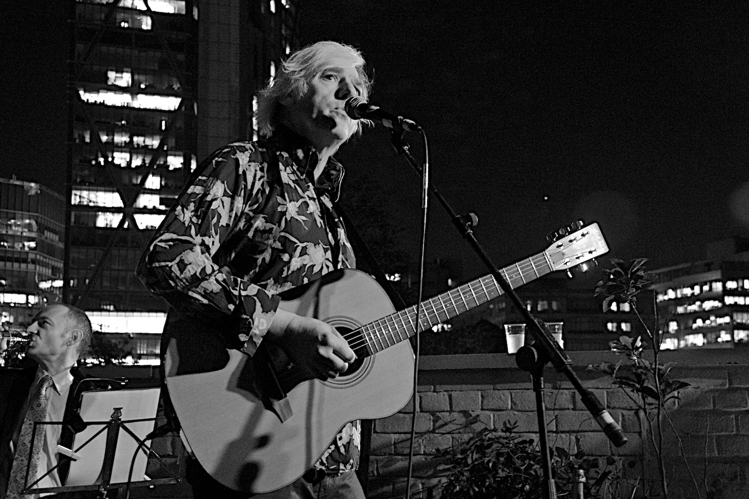 Robyn Hitchcock I Often Dream Of Trains