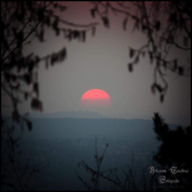 Die Sonne auf dem Kappelberg