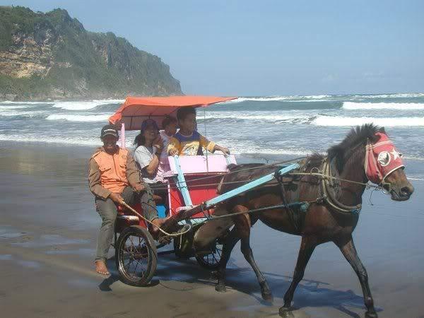 Pantai Parangtritis Yogyakarta 5