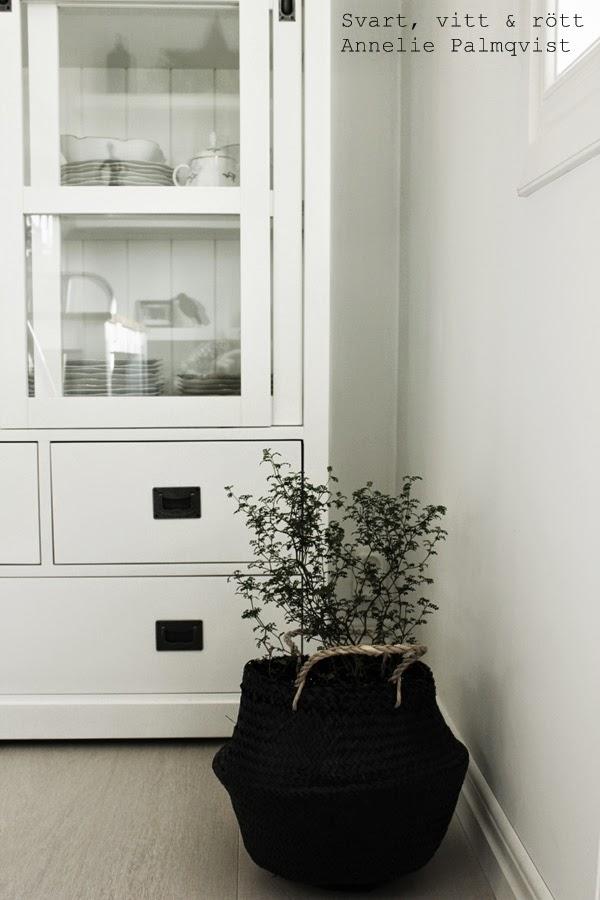 afrokorg, svart stråkorg med handtag, korg, sephora, växt, grön växt, annelie palmqvist, vitt vitrinskåp. matsal, interior, inredning, interiör, vit parkett, inspiration, kvantum, ica, tips,