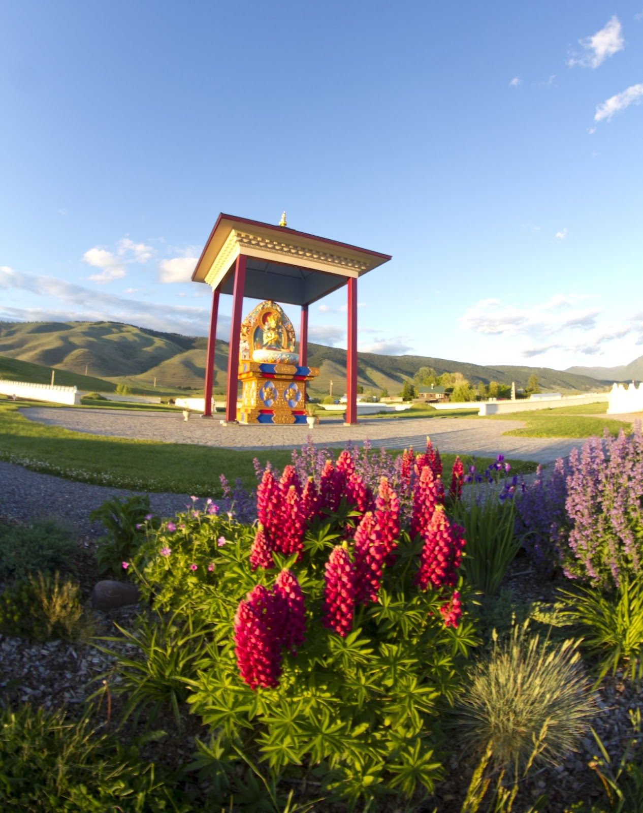 Moneyless world free world priceless world out of the wild into missoula Garden of one thousand buddhas