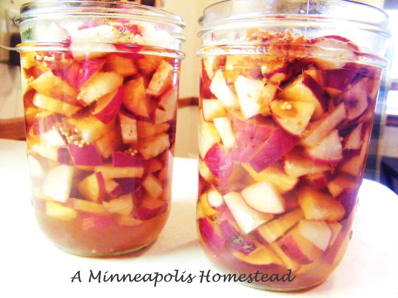 Pickled Radish Recipe - Minneapolis Homestead