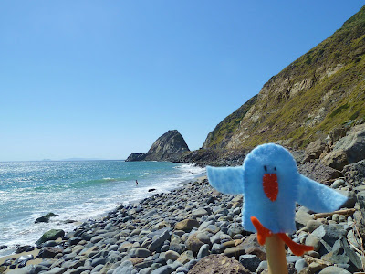 Finger Puppet on the Coast