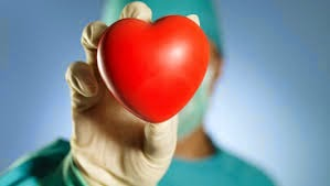 Organ Donation Quotes Sayings
