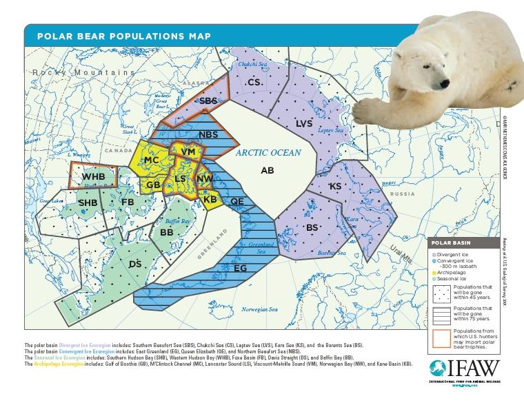 Polar Bears and The Climate: Location