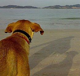 Ruty y el mar