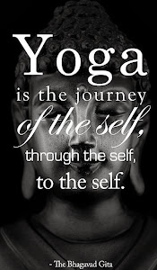 The Love of Yoga