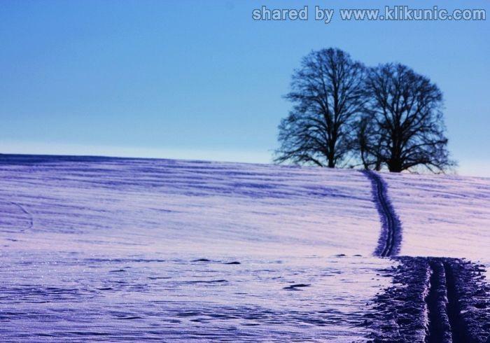 http://4.bp.blogspot.com/-OQ2rVr7URCI/TXiD4XNYkQI/AAAAAAAAQlY/QHBfrnbl-nw/s1600/winter_36.jpg