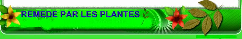 Remède  par les Plantes