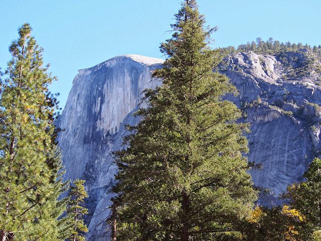 Perpetual Motion, a year of RV travel: Yosemite National Park