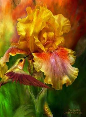 flores-exóticas