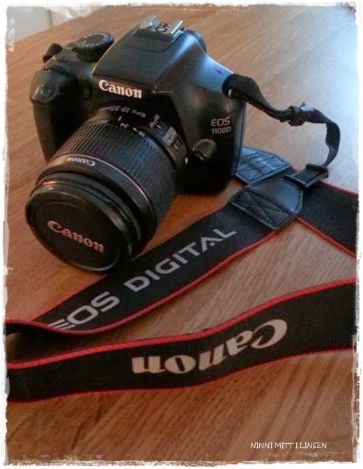 Ninnis fotoblogg