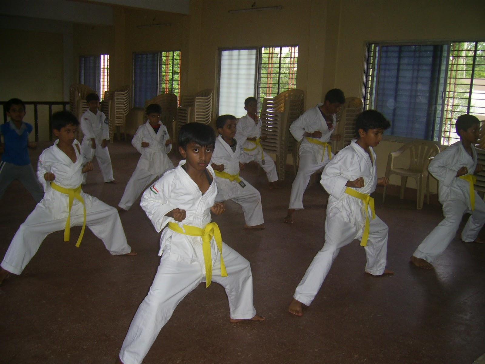 Okinawa Shorinryu Karate Shink...